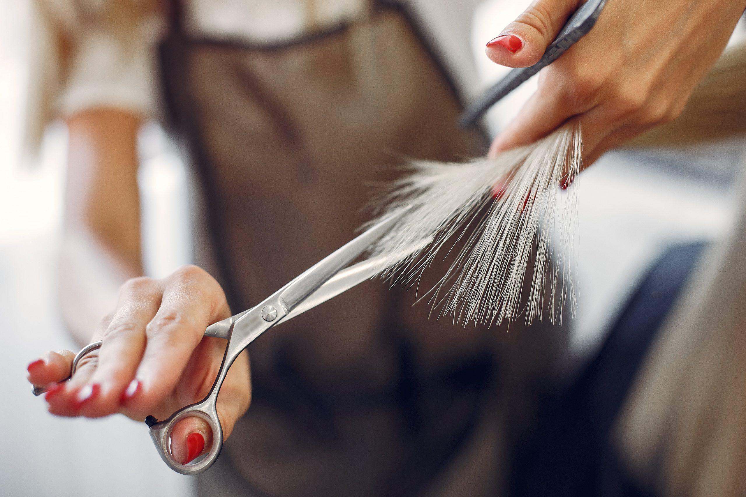 Consejos y recomendaciones si quieres estudiar peluquería profesional